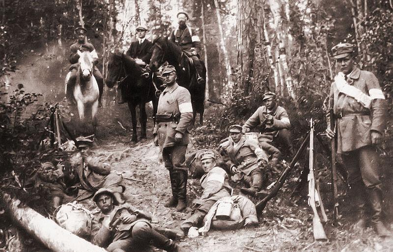 Volunteers in the Karelian Forest